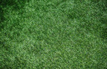 pelouse-artificielle
